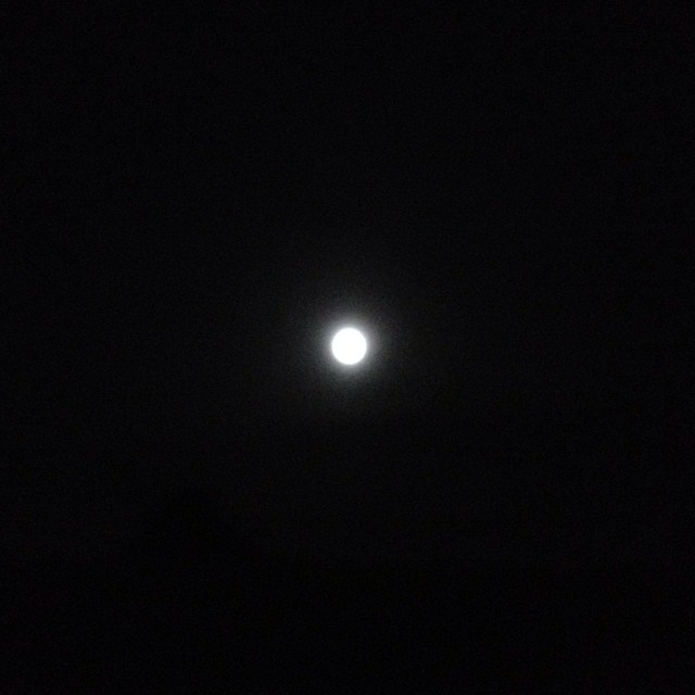 just when you think there are no more lessons to be learned from lingering, no more answers possibly offered to your attending, you look up from the same parking lot to see that even the moon, as reflective as it is, can only be so full.