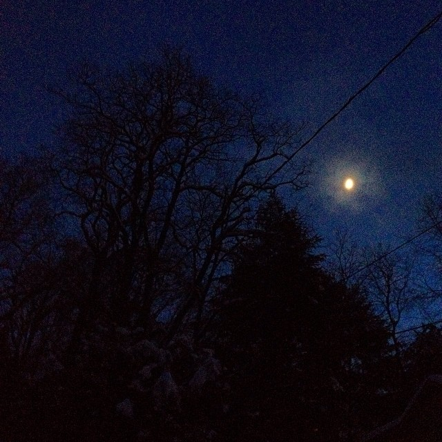 blue is a way of blinking of breathing in the cold, of dreaming of diving for the underwater moon. (moon as in reason you can see your breath leaving you. moon as in poem. blue as in room.)